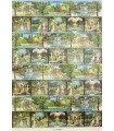 Italian Gardens Wrapping Paper
